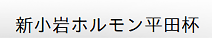 新小岩ホルモン平田杯